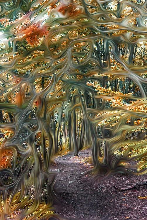 Weaved Woods I - Image 0