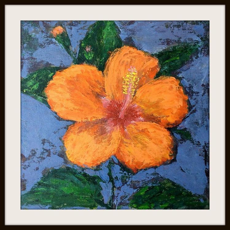 Hibiscus - Image 0