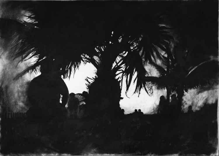 Palm, Mexico -