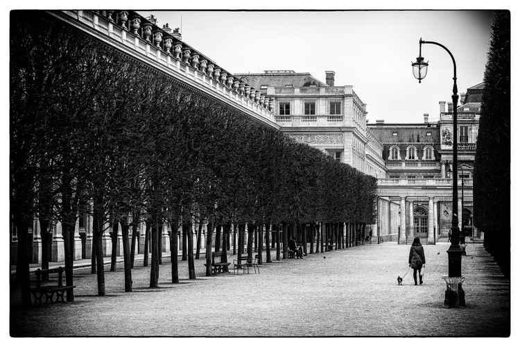 palace -