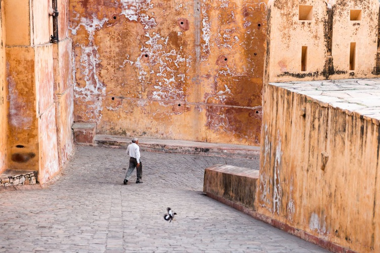 Amer Fort, Jaipur II (59x42cm) - Image 0