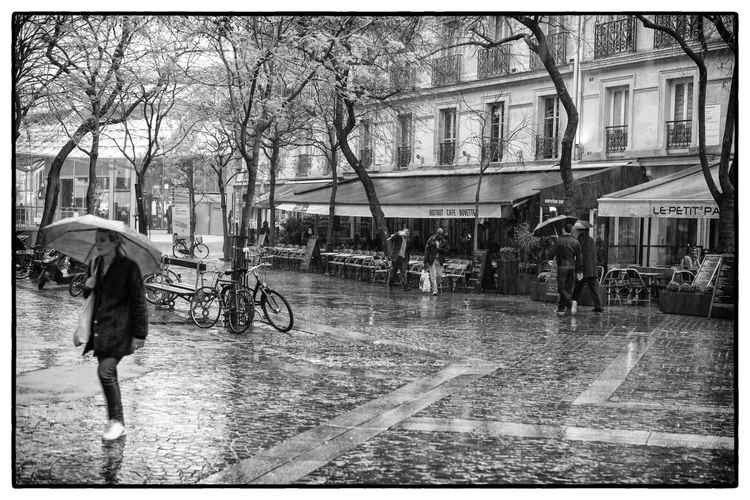 Rainy Day -