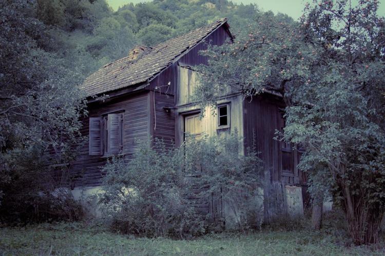 Abandoned House. - Image 0