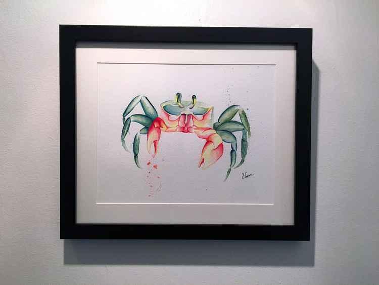 Sand Crab -