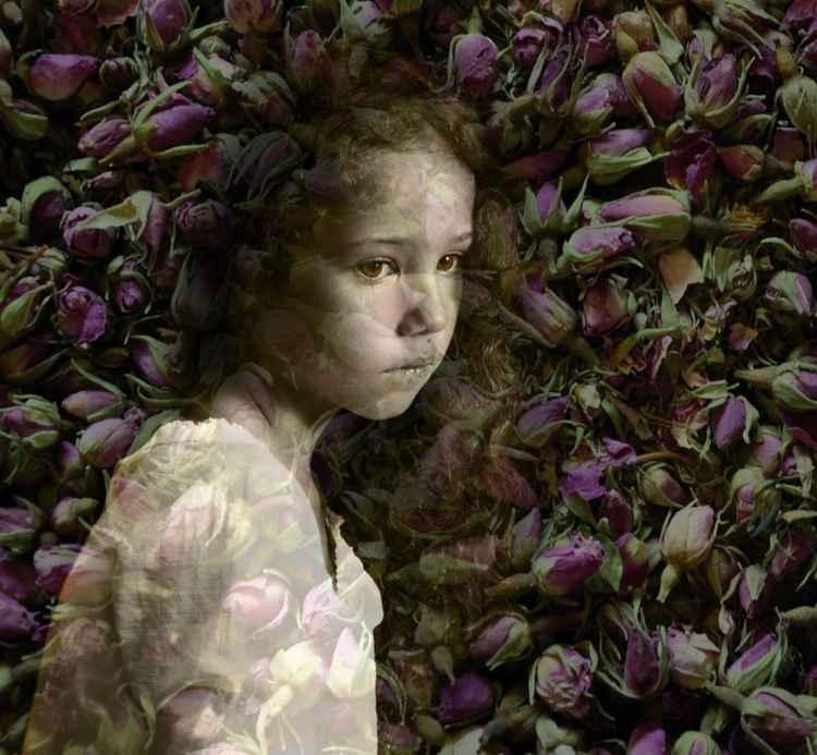 Rose Girl -