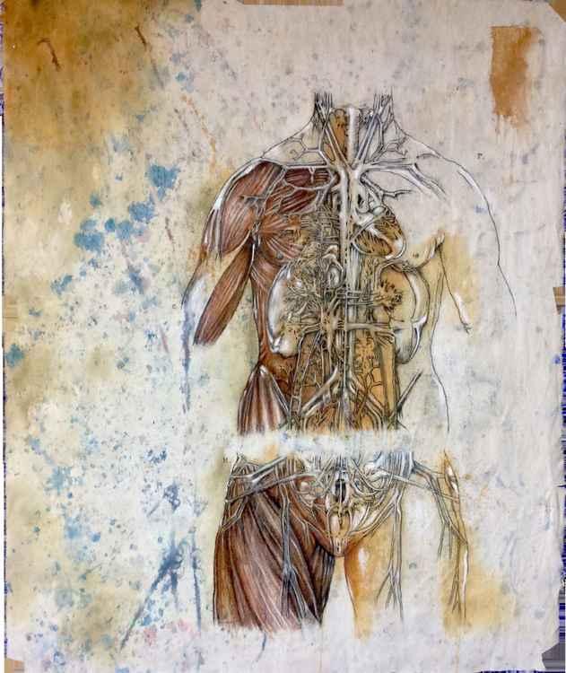 The Stranger: humani corporis mysterium X -