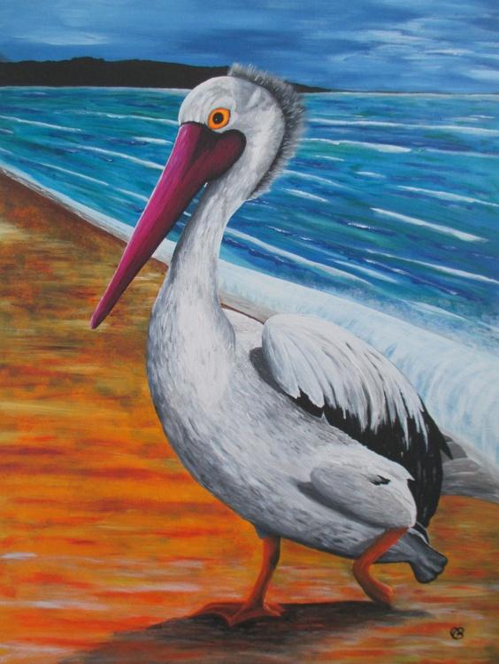 Pelican - Image 0