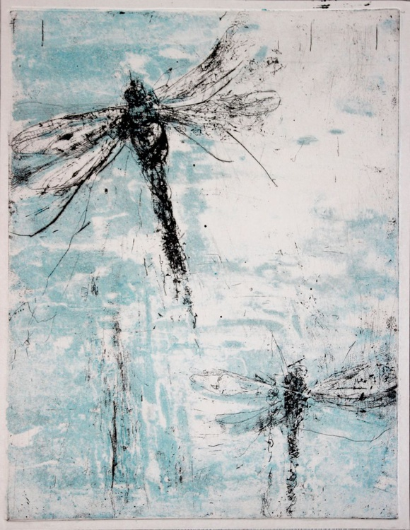 dragonfly 2a - Image 0