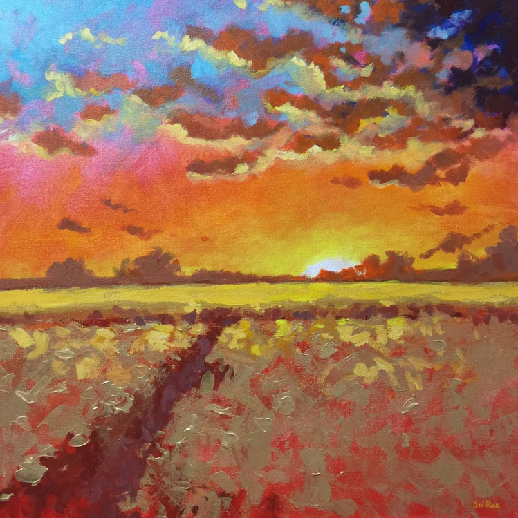 Sunset over the fields - Image 0