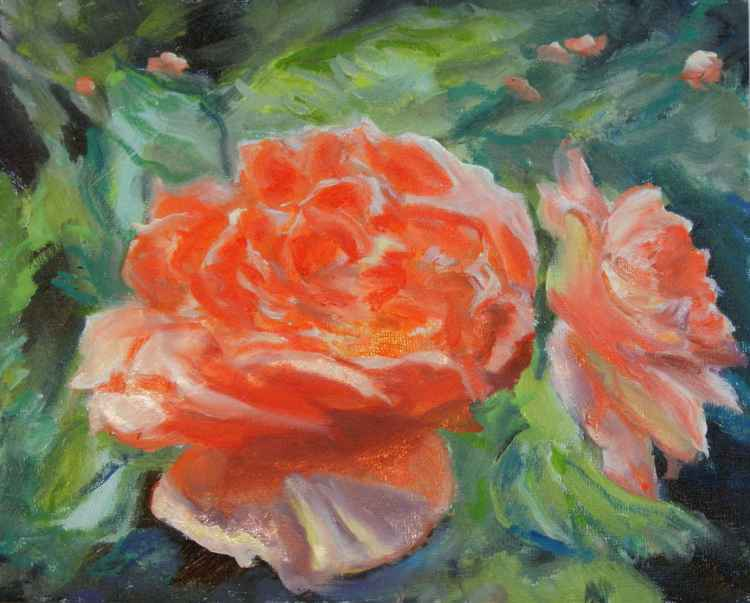 Orange Roses -