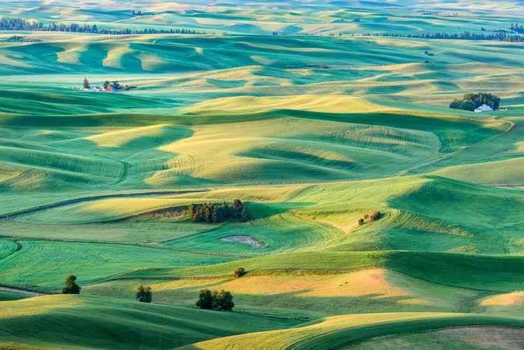 Sunlit Lands -
