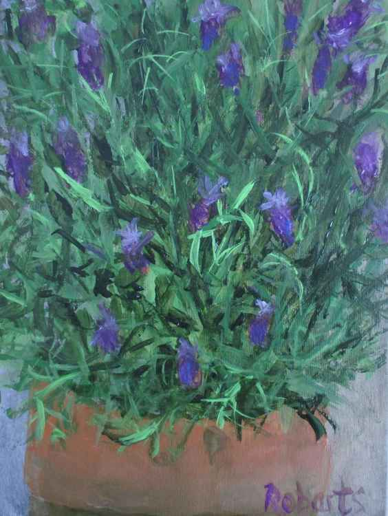 Lavender - Daily painting 61 -