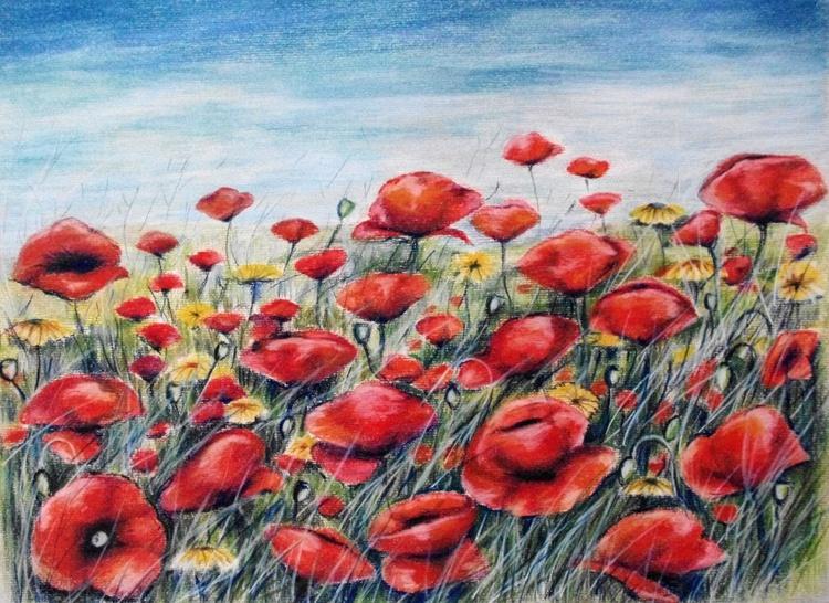 Poppy Meadow - Image 0