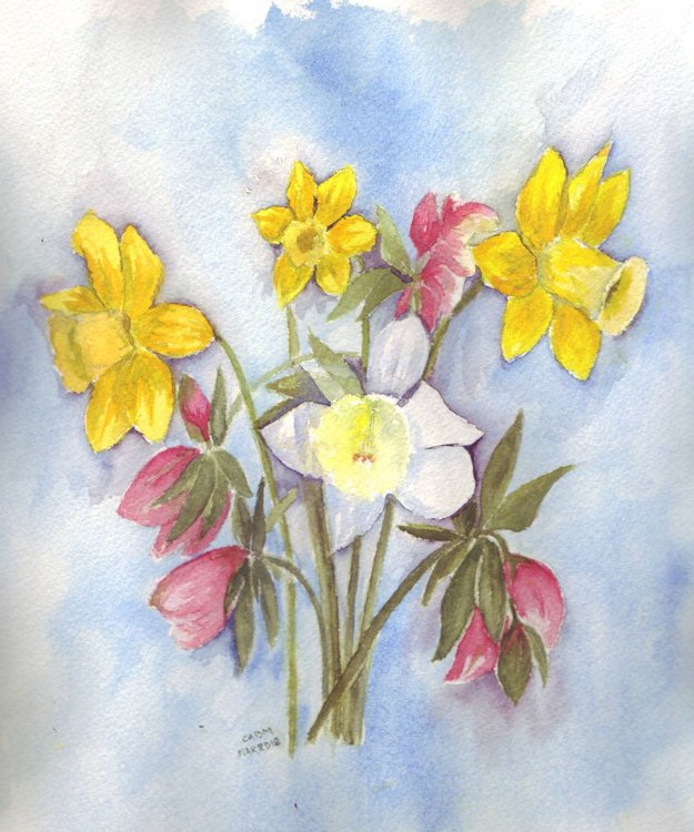 Spring flowers daffodils and hellebore artfinder spring flowers daffodils and hellebore 1 mightylinksfo