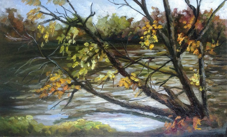 Fall trees and water - Image 0