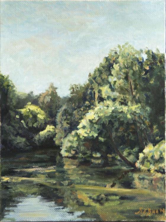 Pond in Park - Image 0