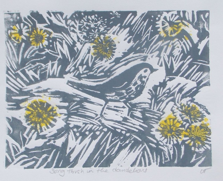 Song Thrush Amongst the dandelions (in grey ink) - Image 0
