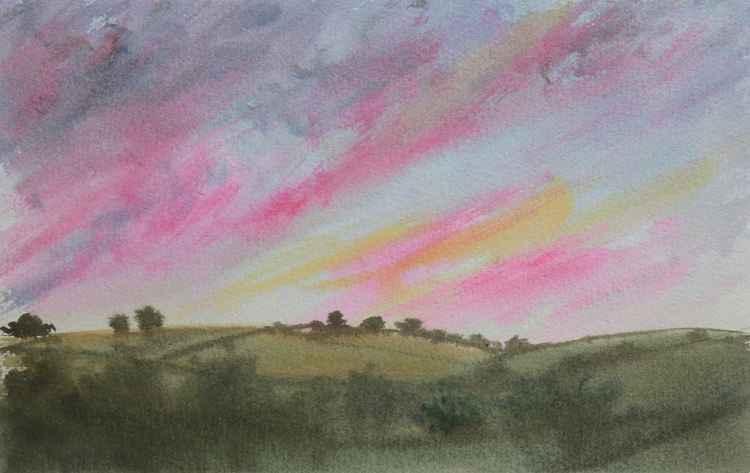 Landscape study ( South Devon )