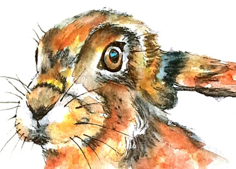 Beautiful Hare - Image 0