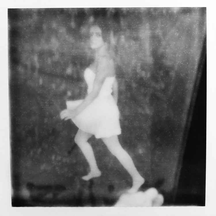 Polaroid 16 -