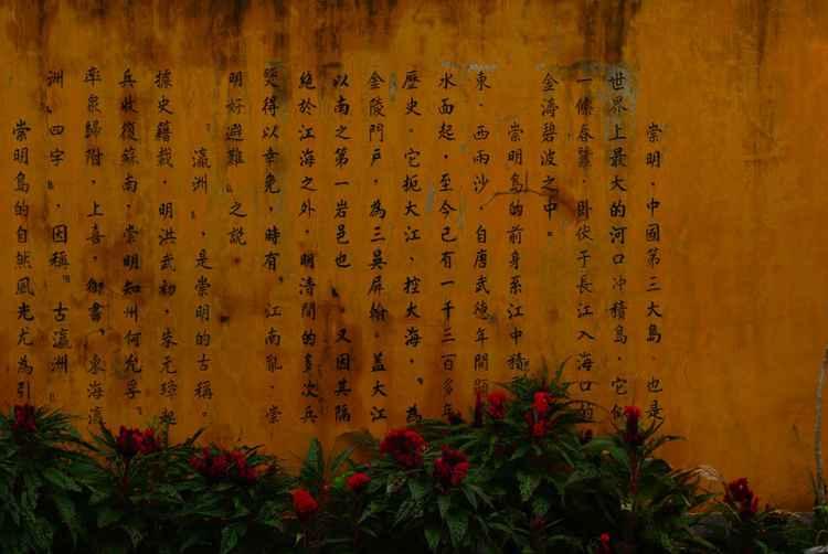 Teachings -