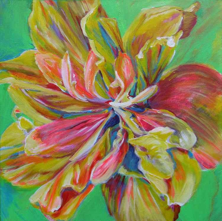 Unfurling bloom