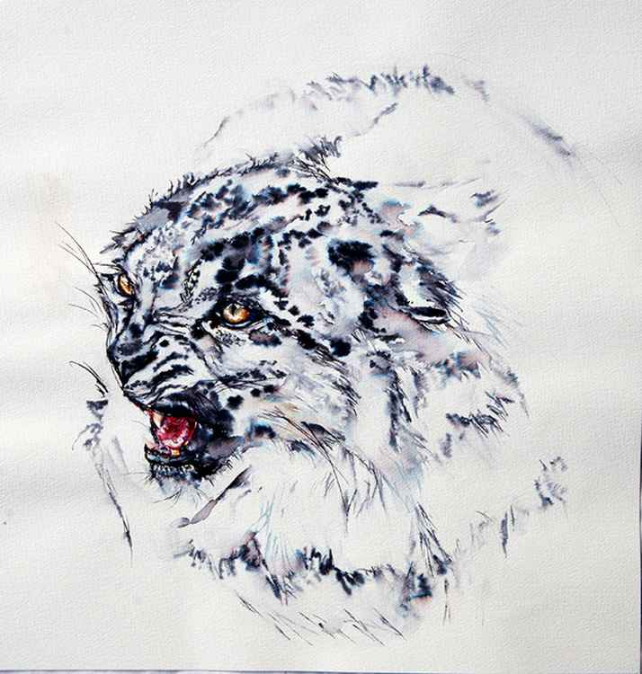Lynx/ Ink painting