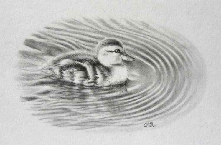 Little Duckling -