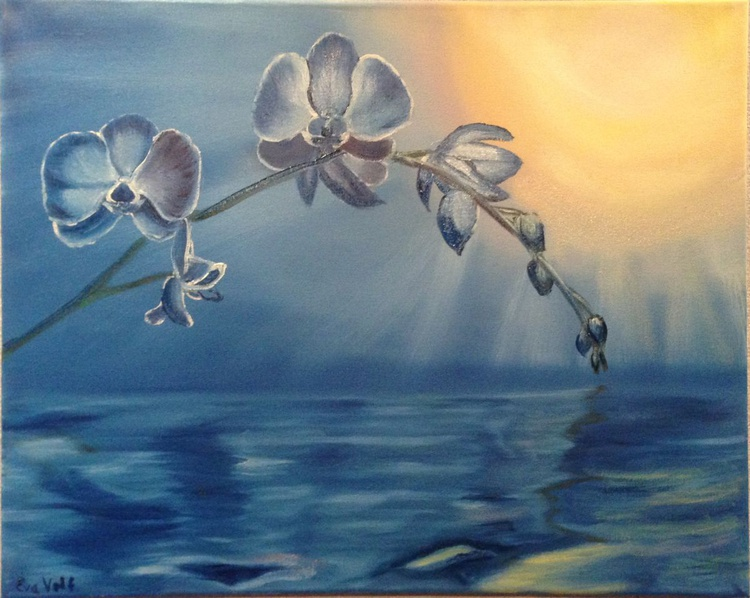 Orchids - Image 0
