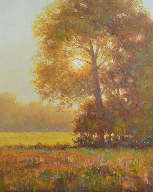 Sunny Morning - Image 0