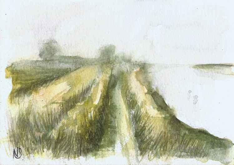 Marsh Walk 2