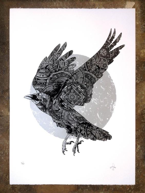 White Crow of Winter - Image 0