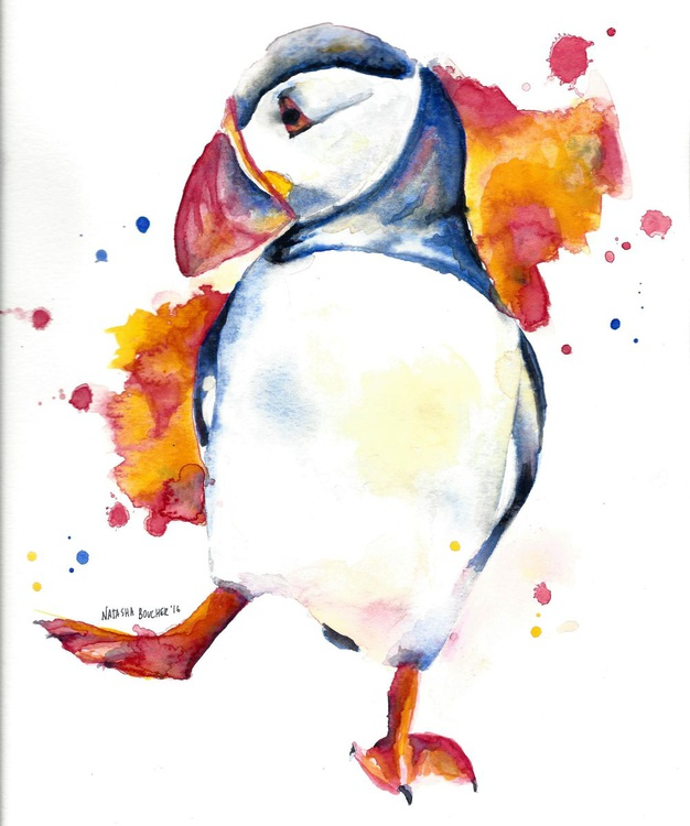 The Puffin - Image 0