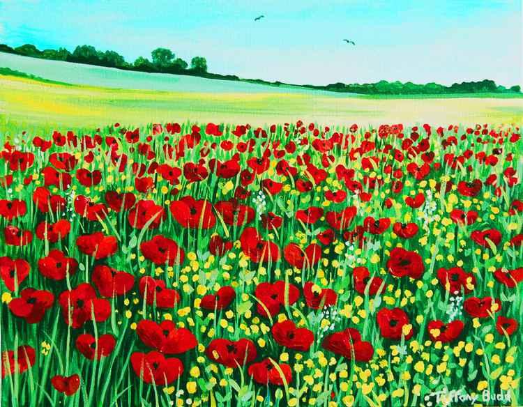 The Poppy Field -