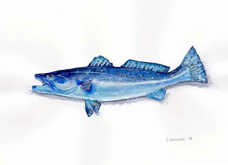 Fish N2 -