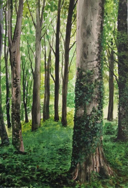 Woodland 3 - Image 0