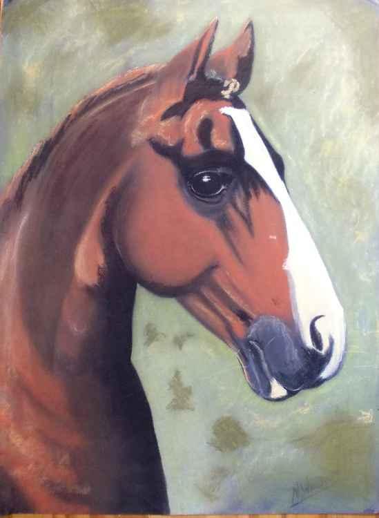 Horse Portrait -