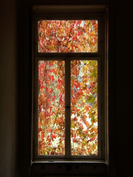 The Autumn Window - Image 0