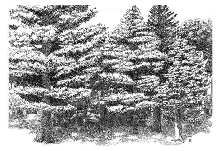 Pine Grove Hideaway -