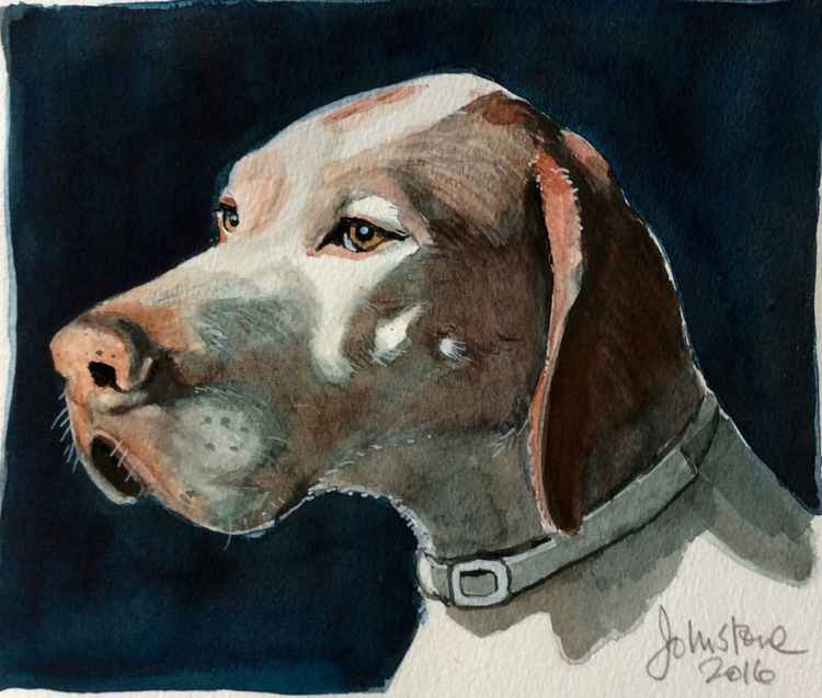 PORTRAIT OF YOUR DOG (OR CAT OR OTHER PET) -