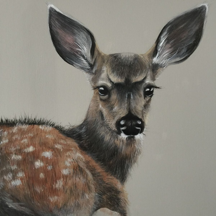 Fawn - Image 0