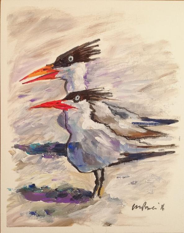 Taking Terns - Daily Bird #72 - Image 0