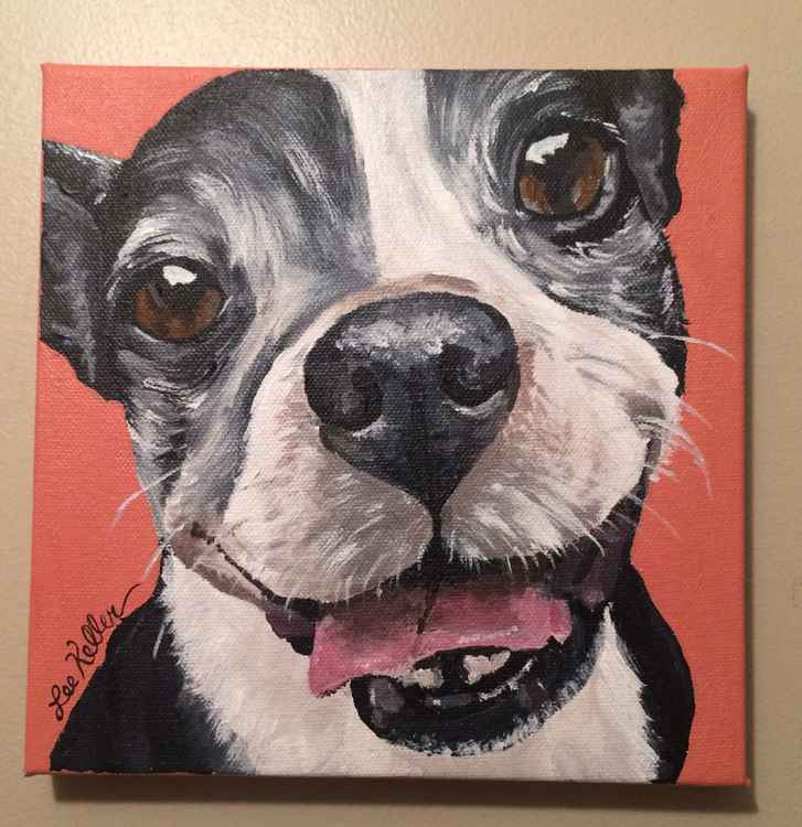Boston Terrier Dog art