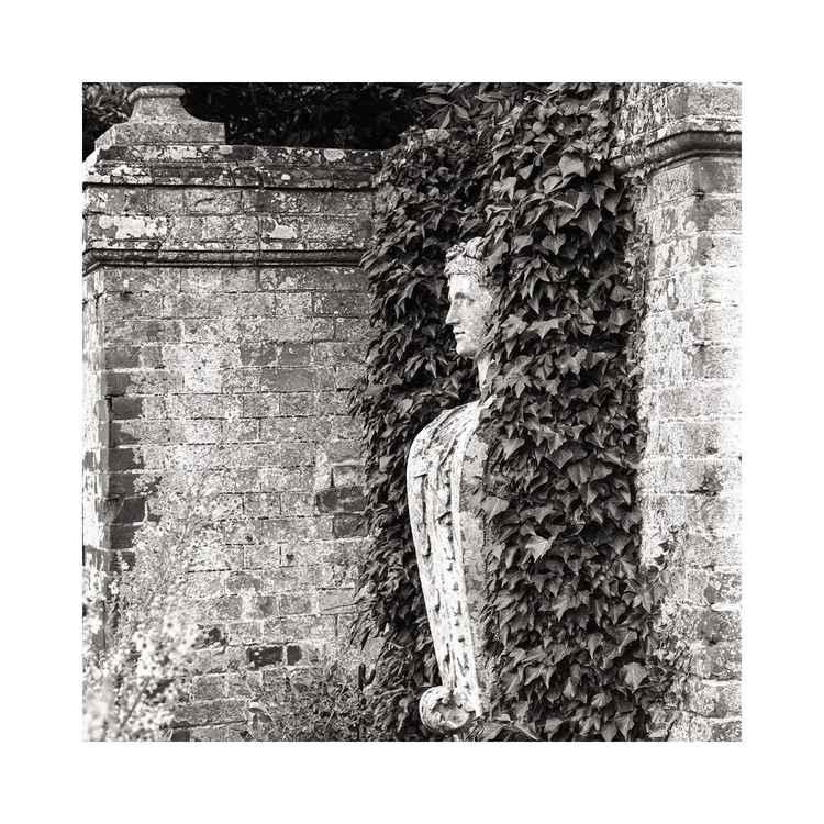 Blickling Hall Gardens, Norfolk, Study#1 -