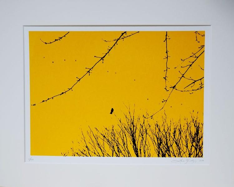 Free as a bird - Image 0