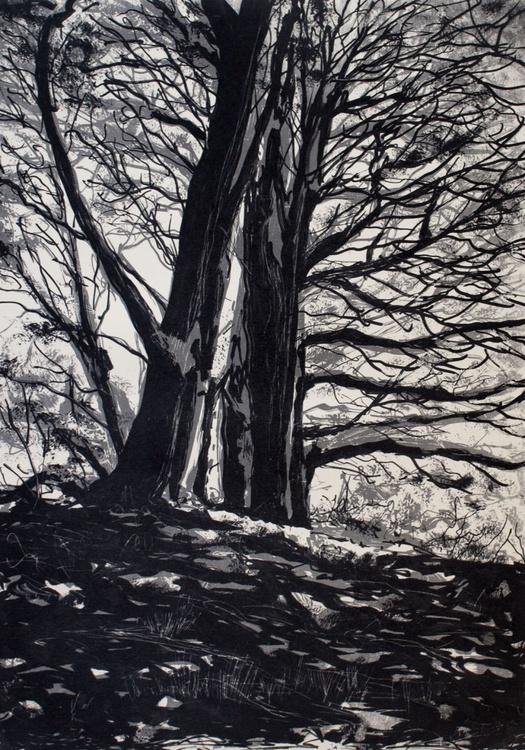 Winter Woodland 2 - Image 0