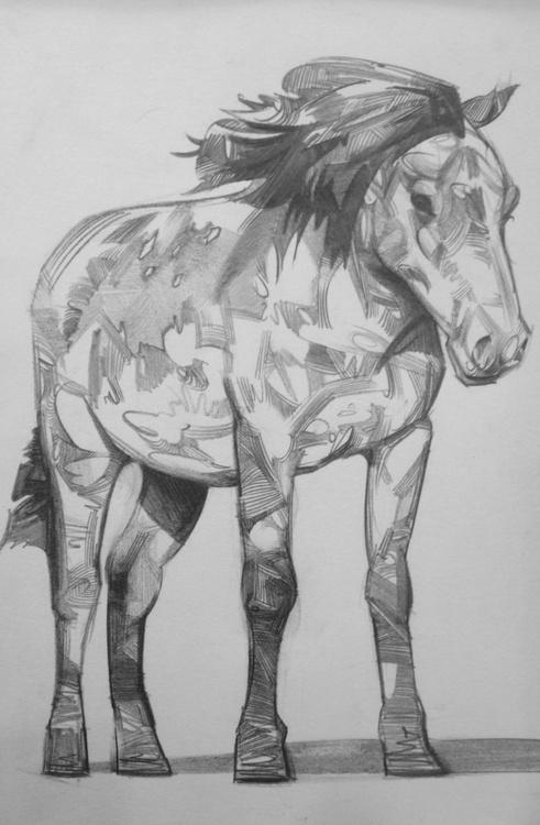 Dartmoor Pony - Image 0