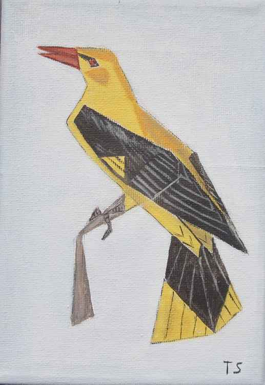 Golden oriole -