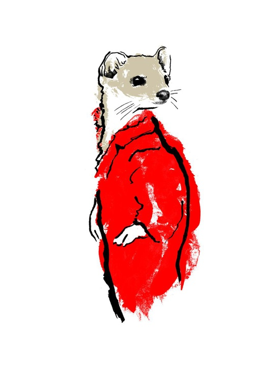 Weasel & Stoat - Image 0