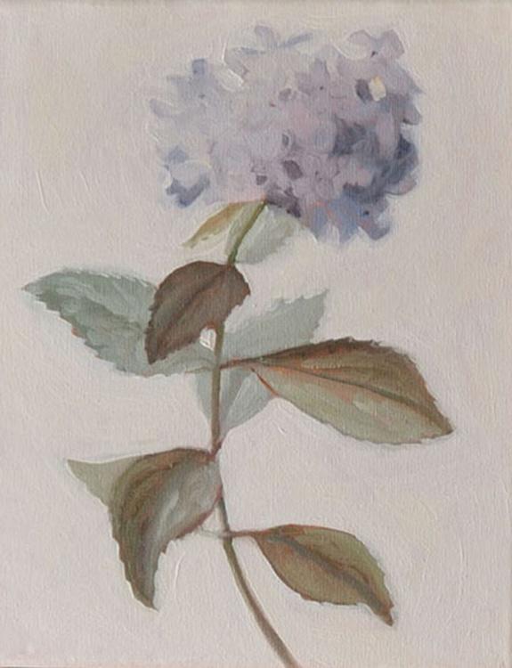 Hydrangea Botanical Oil Painting on Canvas Frame - Image 0